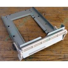 Заглушка для корзины SCSI дисков 55.59903.011 для серверов HP Compaq (Дрезна)