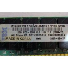 IBM 39M5811 39M5812 2Gb (2048Mb) DDR2 ECC Reg memory (Дрезна)