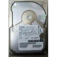 Жесткий диск 18.2Gb IBM Ultrastar DDYS-T18350 Ultra3 SCSI (Дрезна)