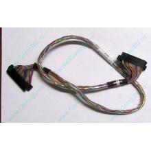 "6017B0045301 в Дрезне, 68pin SCSI кабель 26.5"" / 57cm для корзины HDD Intel SR2400 (Дрезна)"