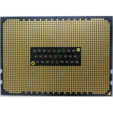 AMD Opteron 6128 OS6128WKT8EGO (Дрезна)